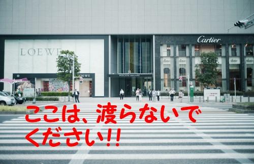 間近いルート名古屋