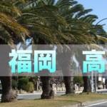 宮崎~福岡の高速バス|3社の料金・時間を徹底比較!