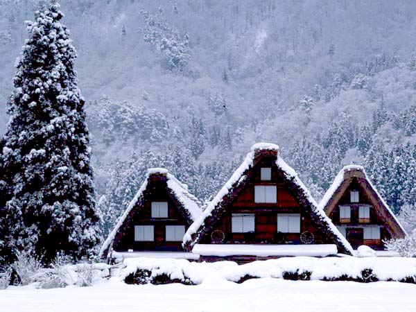 shirakawago_snow