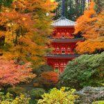 スマートなバスツアーで少し違った秋の奈良を満喫しよう!