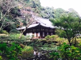 v奈良バスツアー