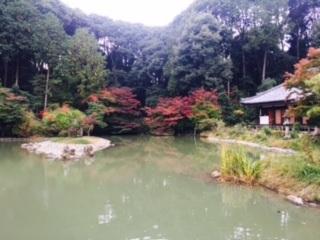 秋の奈良バスツアー